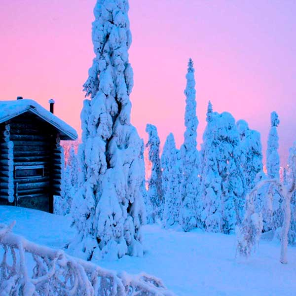 Suomen talvi on upea! | The Finnish winter is very special